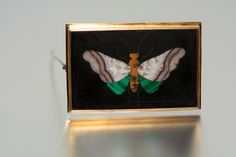 I Found this at Monte Cristo's Jewelry - Large 18K Victorian Pietra Dura Brooch
