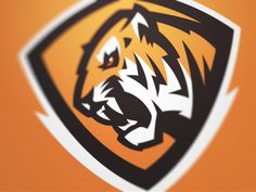 Tiger 2 by Fraser Davidson