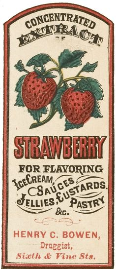 Labels for extracts of pineapple, raspberry, strawberry, vanilla, and lemon.