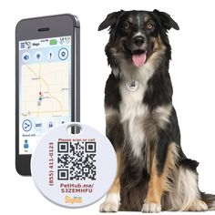 Bluetooth Digital Pet ID | Never lose track of your lovely pet with this awesome product. Shop at SkyMall.com!