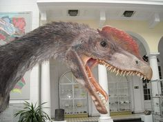 How Much Do You Really Know About Dilophosaurus?: Fact #5 - Dilophosaurus Lived During the Early Jurassic Period