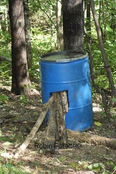 Bear Bait Barrel How To Build And Secure A Bear Bait