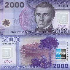 Portrait, 1, History, Paper, Banknote, Chili, Collections, Google, Silver