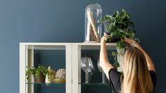 Hier erfährst du, wie dein Geschirr auch nach dem Essen noch stilvoll wirkt. Unsere Einrichter zeigen dir, wie!