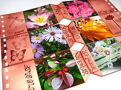 tag book flowers  by Godelieve Tijskens  @Darkroom Door