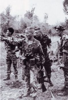 Question about scopes... - AR15.Com Archive