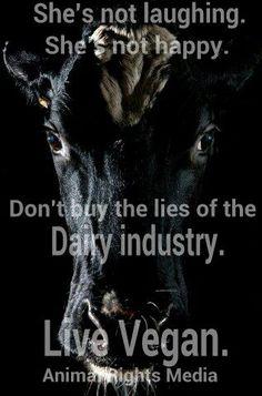 Dairy Cows = Unhappy Cows