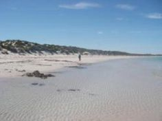 Book Yorke Peninsula accommodation with Stayz, home to over holiday houses Australia-wide. Lily, Cottage, Australia, Park, Beach, Water, House, Travel, Outdoor