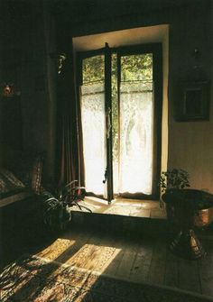 Wood, lace, light, nature.