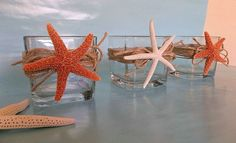 Beach Decor Starfish Candle Holder Votives - Shell Candle Holders with Starfish- Set of 3