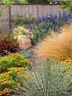 Wind and drought go hand in hand. That's because wind causes plants to lose moisture from their leaves, forcing them to pull up additional sources of water from the soil. High Desert Landscaping, Water Wise Landscaping, Front Yard Landscaping, Landscaping Ideas, Landscaping Software, Backyard Ideas, Colorado Landscaping, Drought Resistant Plants, Drought Tolerant Landscape
