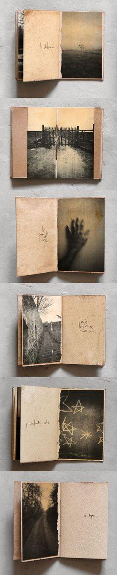 .. inside ' FIELES ESTELAS PERDIDAS ' : unique book : 2016 ··· juanan requena ··· www.nodetenerse.com