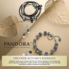 PANDORA 2014 Autumn Collection of Charms and Jewelry has Arrived!
