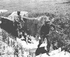 war dog training at Fort Robinson during WWII