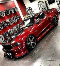 Mustang beast