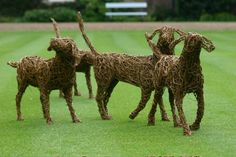 Emma Stothard -  Willow Sculpture and Wire Sculpture…
