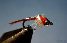 Rainbow Warrior | www.johnkreft.com