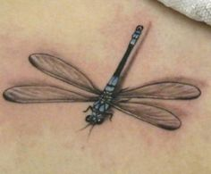 Would it be weird if I got a second dragonfly tattoo? Not sure where I'd get it, but I love this one with the shadow.