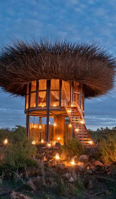 Guests Can Sleep Overnight In This Bird Nest In Kenya