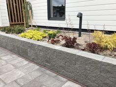 Antikko Sidewalk, Flowers, Plants, Mood, Dreams, Walkway, Flora, Plant, Royal Icing Flowers