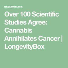 Over 100 Scientific Studies Agree: Cannabis Annihilates Cancer   LongevityBox