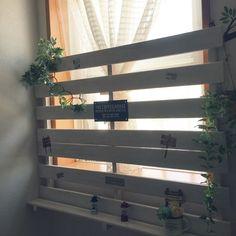 すのこDIY/ガーデニングもボチボチ頑張ります!/窓目隠し/玄関/入り口のインテリア実例 - 2016-08-12 22:30:24 | RoomClip(ルームクリップ)