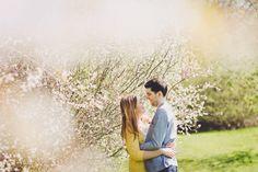 engagement session photo blossom pamphill dorset