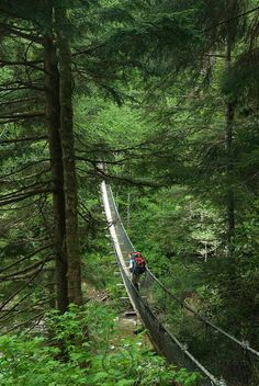 Logan creek suspension bridge, West Coast Trail, Pacific Rim National Park Reserve, Vancouver Island, BC, Canada