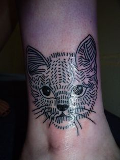 cat by lyam, via Flickr