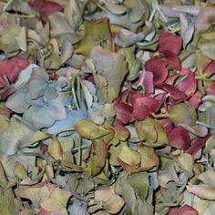 Victorian Wedding Dried Petals