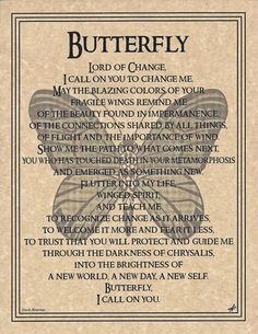 Prayer to theHEDGEHOG Spirit Guide Animal Totem. to the item you receive… can result due to photographic lighting and monitor color variations. MUST REMIT. Butterfly Spirit Animal, Butterfly Quotes, Butterfly Symbolism, Monarch Butterfly Meaning, Butterfly Tattoo Meaning, About Butterfly, Spirit Animal Tattoo, Healing Spells, Magick Spells