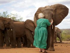 Dr. Dame Daphne Sheldrick with one of the older orphans perhaps at Ithumba.