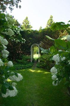 Simple hedges, hydrangeas and pachysandra. Greenwhite1