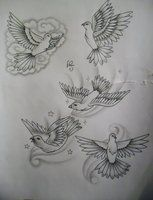 dove tattoo design by tattoosuzette