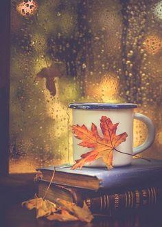 Books, tea and rain drops - Fall pictures nature - Autumn Cozy, Autumn Rain, Autumn Tea, Autumn Coffee, Autumn Morning, Autumn Nature, Autumn Aesthetic, Fall Wallpaper, Aztec Wallpaper