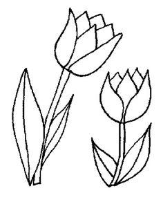 tulpen kleurplaat