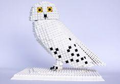 tom poulsom: LEGO bird man
