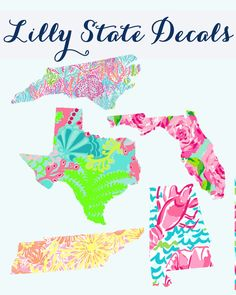 Lilly Pulitzer State Decal 5 Inches by PrettyLettersShop on Etsy