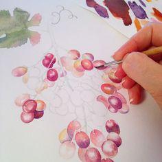 Check my work at Behance :: Watercolor grape illustration by Olga Chuykova