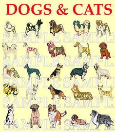 Dogs & #cats, #embroidery #machine designs on a cd,  View more on the LINK: 	http://www.zeppy.io/product/gb/2/262333474320/