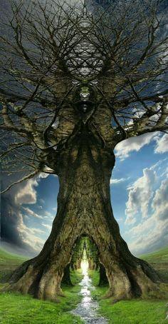 Accurate Love spells, Divorce spells Broken Relationships and protection New York, London +27786966898 info@spiritualhealerpsychic.com/drraheem22@gmail.com https://www.spiritualhealerpsychic.com/ https://www.linkedin.com/in/kiteete-raheem-09525a153/ https://plus.google.com/113935548839385207758 https://za.pinterest.com/drraheem/ https://twitter.com/drraheem22 https://vimeo.com/psyschicraheem https://www.flickr.com/people/148873604@N04/ https://www.facebook.com/psychicraheem1 https://rem