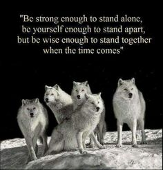 A good creed to live by. Wolves mate for life?
