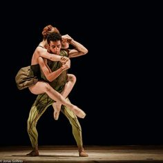 Ballet Arvore