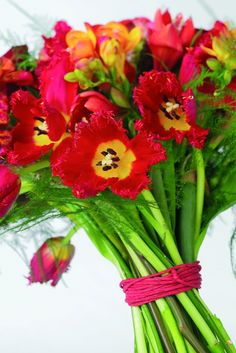 Ramo de flores frescas (oficina holandesa de la flor).