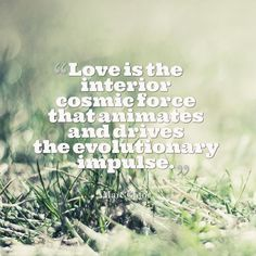 """""""Love is the interior kosmic force that animates and drives the evolutionary impulse.""""  - Marc Gafni (Your Unique Self: The Radical Path to Personal Enlightenment)   :: http://www.marcgafni.com/"""