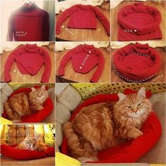 How to DIY Cozy Cat Bed from Old Sweater | iCreativeIdeas.com Like Us on Facebook ==> https://www.facebook.com/icreativeideas