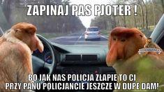 Memy i generator memów o typowej polskiej rodzinie Januszu Nosacz, Grażynie Nosacz, Pioterze Nosacz i ich somsiadach. Satyra ze stereotypowego zachowania Polaka. W główne role memów wcielają się wdzięczne nosacze sundajski Wtf Funny, Funny Cute, Best Memes, Hetalia, Science, Best Memes Ever, Ha Ha, Science Comics