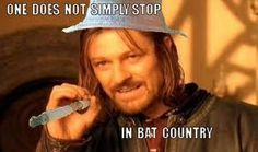 Bat Country!!