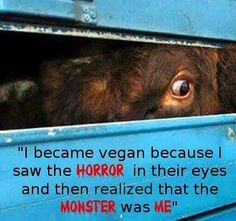 The monsters are meat, egg, and dairy consumers who keep paying for this animal abuse, torture and murder. Wake up people! Vegetarian Quotes, Vegan Quotes, Vegan Vegetarian, Vegan Memes, Vegan Humor, Vegan Facts, Healthy Eating Recipes, Vegan Recipes, Cruel People