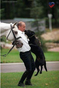 PsBattle: Vladimir Putin and cheerful dog and horse Vladimir Putin, United Russia, President Of Russia, Russia Putin, Amor Animal, World Leaders, Famous People, Cute Animals, Terrier